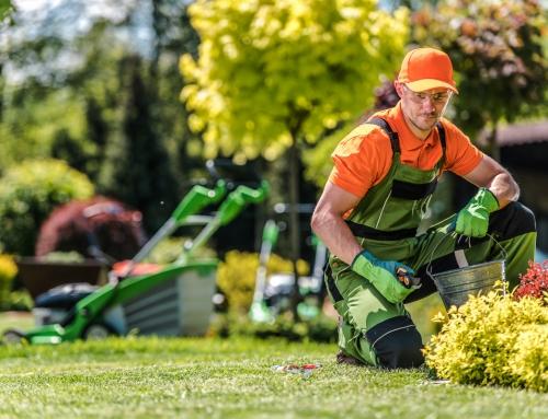 Wie sich das Finanzamt an der Gartenumgestaltung beteiligen lässt