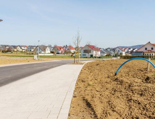 Grundstücksschenkung an Kinder kurz vor Weiterverkauf ist zulässig